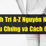 Bệnh Trĩ Nội Ngoại Là Gì | Những Cách Điều Trị Hiệu Quả Thần Kỳ [2019]