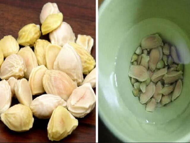 Hạt bưởi trong vấn đề hỗ trợ điều trị bệnh đau dạ dày