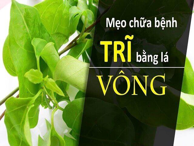 La Vong Chua Benh Tri 5