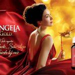 Sâm Angela Gold Có Tác Dụng Gì, Có Tốt Không, Giá Bán, Tuổi Nào Dùng Được