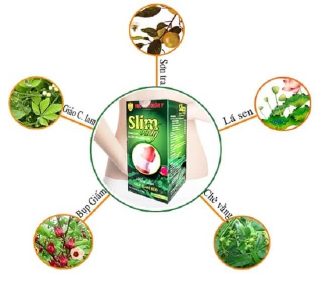 Các thành phần có trong thuốc giảm cân Slim Body Học Viện Quân Y bạn nên biết